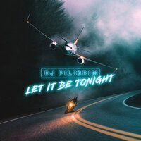 Постер песни DJ Piligrim - Let It Be Tonight